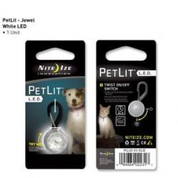 Светящийся брелок на ошейник PetLit