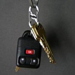 Карабин S-Biner с запирающим замком MicroLock для ключей