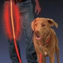 Светящийся светодиодный поводок Nite Dawg - LED Pet Leash