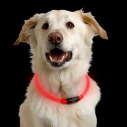 Светящийся светодиодный ошейник NiteHowl LED Safety Necklace